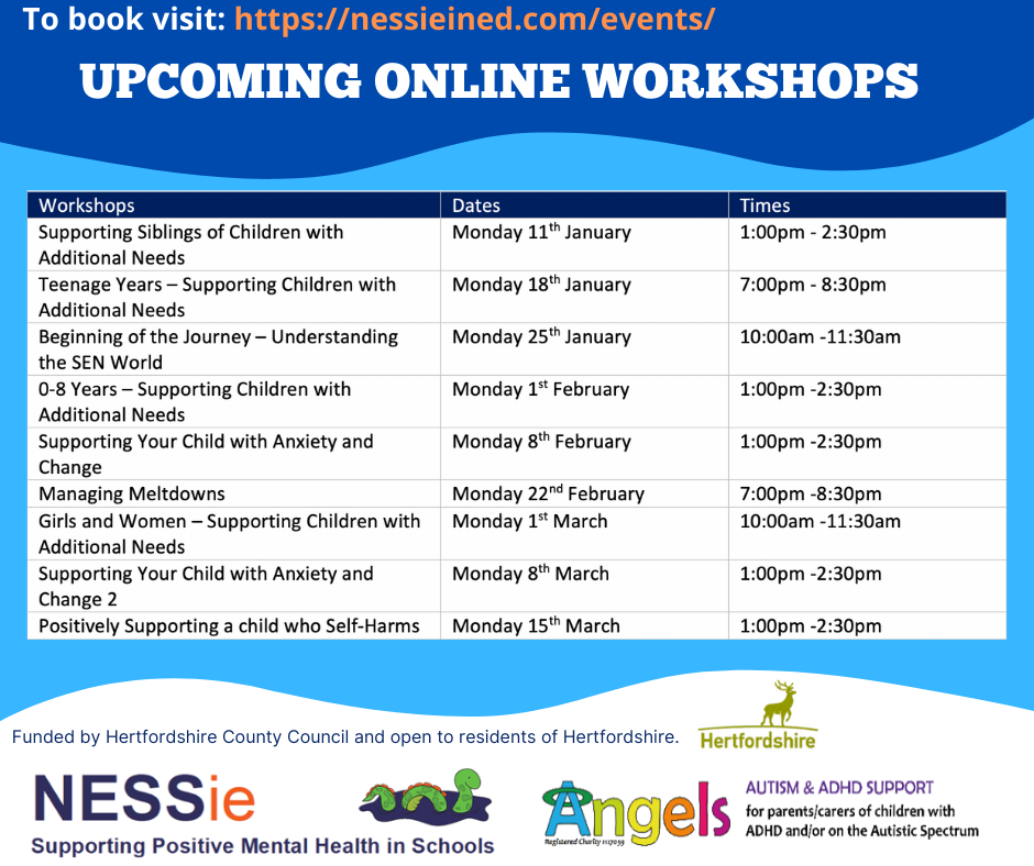 NESSie: Upcoming workshops